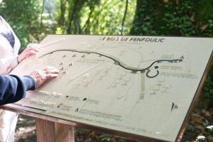 Bois de Penfoulic,, balade adaptée aux handicaps à Fouesnant