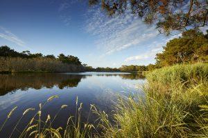 Polder et Marais de Mousterlin Fouesnant