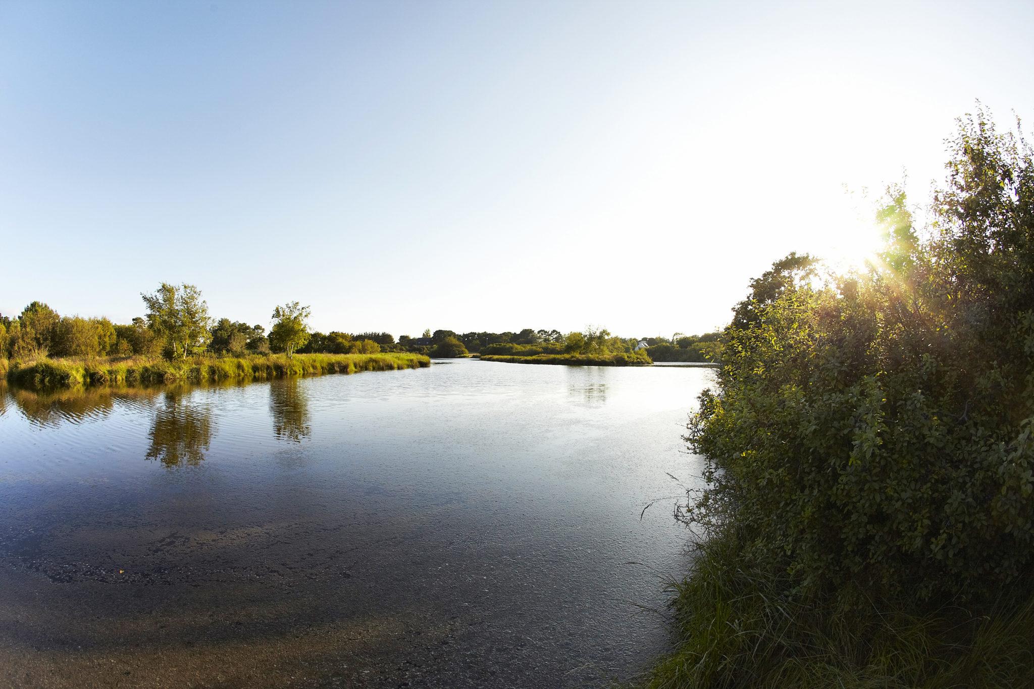 Marais de Mousterlin