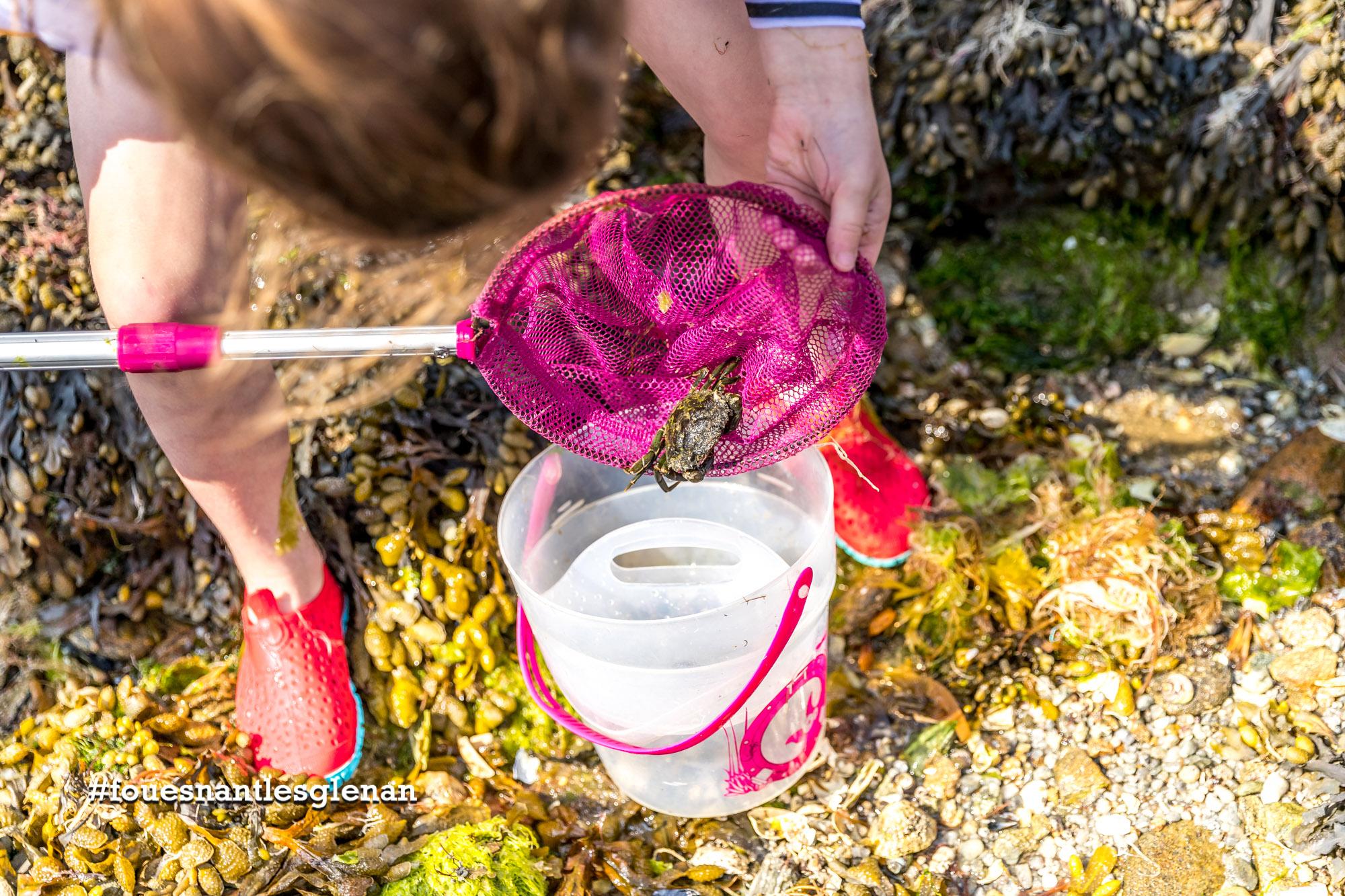 Pourquoi pas… tester la pêche à pied au Cap-Coz