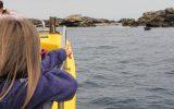 4 Balades et pêche en mer – Guilvinec – Pays Bigouden