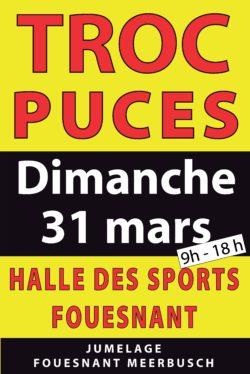 AFFICHE-TROC-ET-PUCES-pdf-250×374