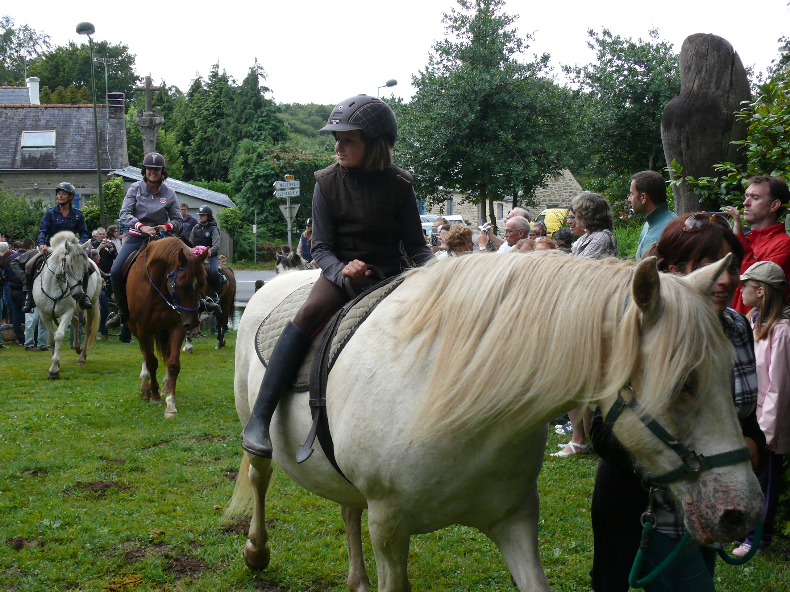 Page 1 – photo couverture pardon des chevaux