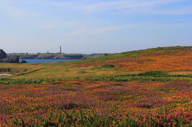 Pennarbed_Ouessant_03