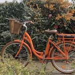 electrique a bicyclette fouesnant